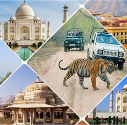 3-nights-4-days-wildlife-with-taj-mahal
